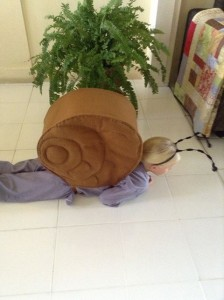 The snail fancy dress